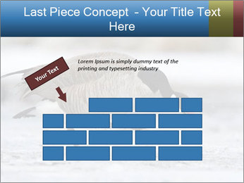 0000073347 PowerPoint Template - Slide 46