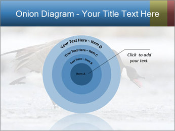 0000073347 PowerPoint Template - Slide 61