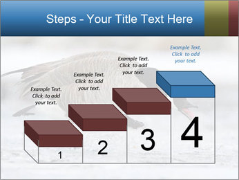 0000073347 PowerPoint Template - Slide 64