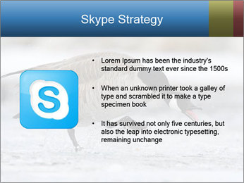 0000073347 PowerPoint Template - Slide 8