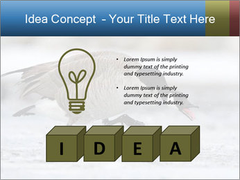 0000073347 PowerPoint Template - Slide 80