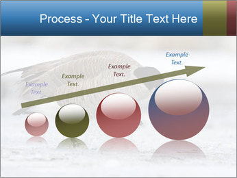 0000073347 PowerPoint Template - Slide 87