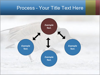 0000073347 PowerPoint Template - Slide 91