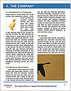 0000073347 Word Template - Page 3