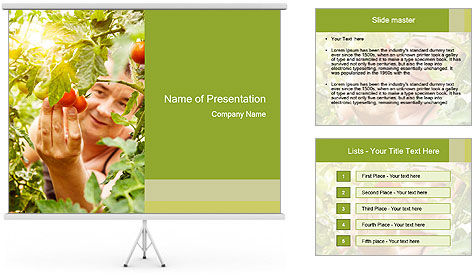 0000073348 PowerPoint Template