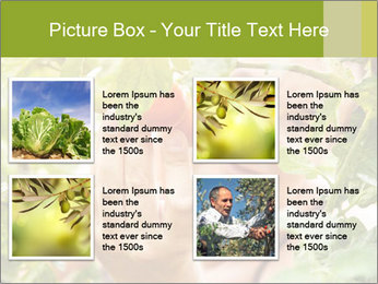 0000073348 PowerPoint Templates - Slide 14