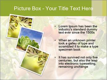 0000073348 PowerPoint Templates - Slide 17