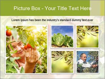 0000073348 PowerPoint Templates - Slide 19