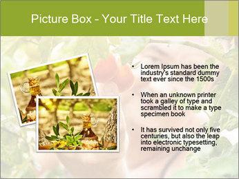 0000073348 PowerPoint Templates - Slide 20