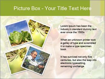 0000073348 PowerPoint Templates - Slide 23