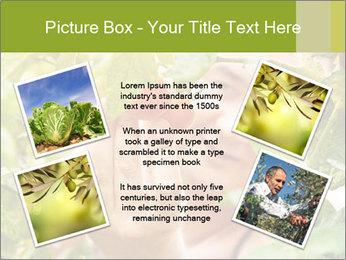 0000073348 PowerPoint Templates - Slide 24