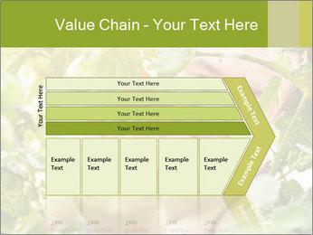 0000073348 PowerPoint Templates - Slide 27
