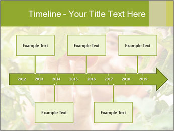 0000073348 PowerPoint Templates - Slide 28