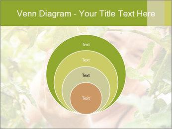 0000073348 PowerPoint Templates - Slide 34