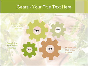 0000073348 PowerPoint Templates - Slide 47