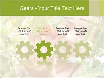 0000073348 PowerPoint Templates - Slide 48