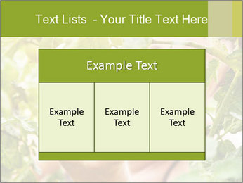 0000073348 PowerPoint Templates - Slide 59