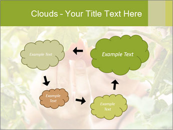 0000073348 PowerPoint Templates - Slide 72