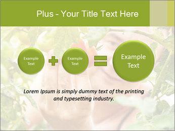 0000073348 PowerPoint Templates - Slide 75