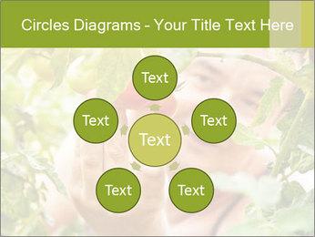 0000073348 PowerPoint Templates - Slide 78