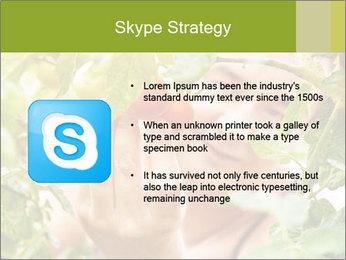 0000073348 PowerPoint Templates - Slide 8