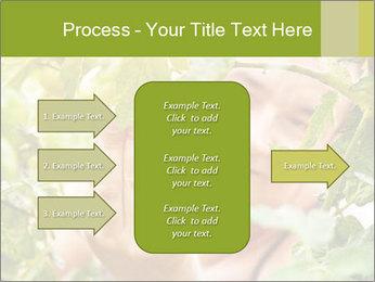 0000073348 PowerPoint Templates - Slide 85