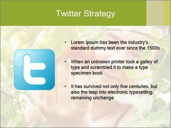 0000073348 PowerPoint Templates - Slide 9