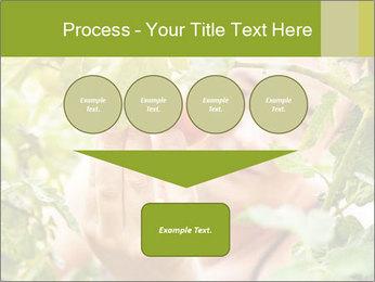 0000073348 PowerPoint Templates - Slide 93
