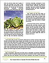 0000073348 Word Template - Page 4