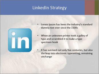 0000073351 PowerPoint Template - Slide 12
