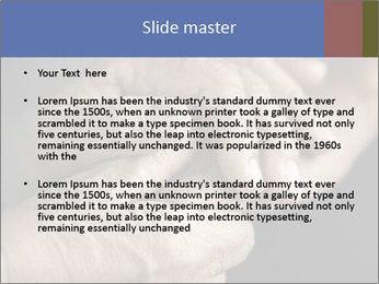 0000073351 PowerPoint Template - Slide 2