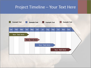 0000073351 PowerPoint Template - Slide 25