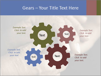 0000073351 PowerPoint Template - Slide 47