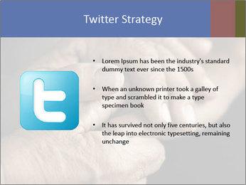 0000073351 PowerPoint Template - Slide 9