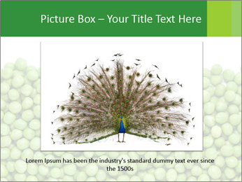 0000073365 PowerPoint Templates - Slide 15