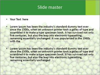 0000073365 PowerPoint Template - Slide 2