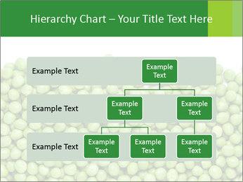 0000073365 PowerPoint Template - Slide 67