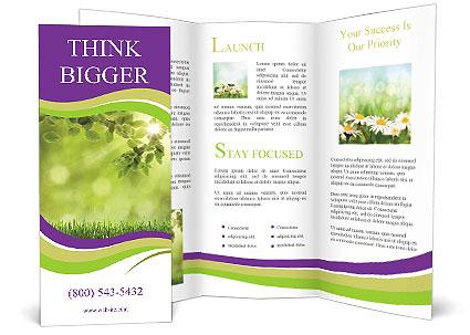 0000073371 Brochure Template