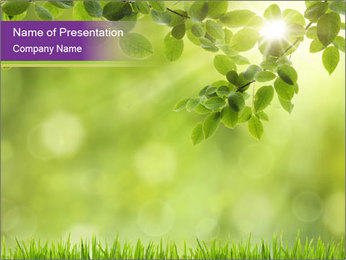 0000073371 PowerPoint Template - Slide 1