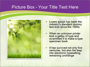 0000073371 PowerPoint Template - Slide 13
