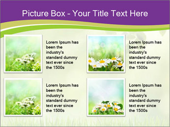 0000073371 PowerPoint Template - Slide 14