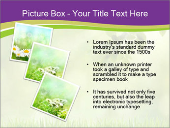 0000073371 PowerPoint Template - Slide 17