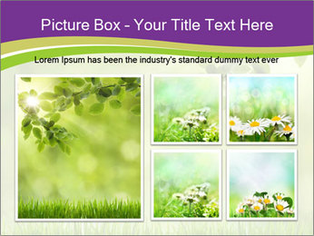 0000073371 PowerPoint Template - Slide 19