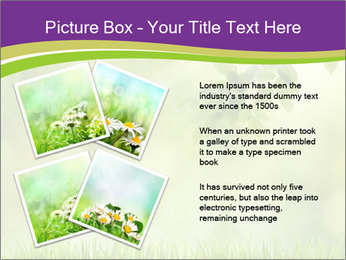 0000073371 PowerPoint Template - Slide 23