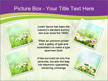 0000073371 PowerPoint Template - Slide 24