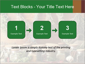 0000073374 PowerPoint Templates - Slide 71