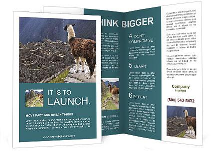 0000073375 Brochure Templates