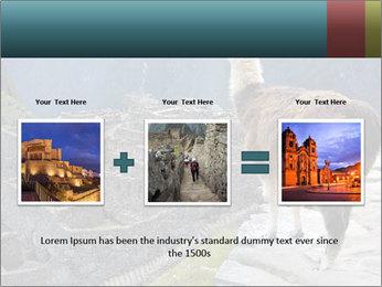 0000073375 PowerPoint Templates - Slide 22