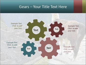 0000073375 PowerPoint Templates - Slide 47