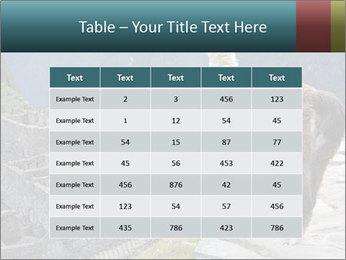 0000073375 PowerPoint Templates - Slide 55